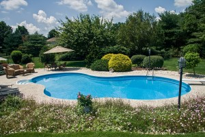 431-Pool&Spa