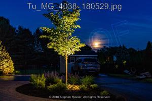Tu MG 4038 180529